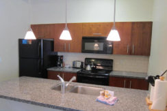panorama-canada-fractional-condo-kitchen