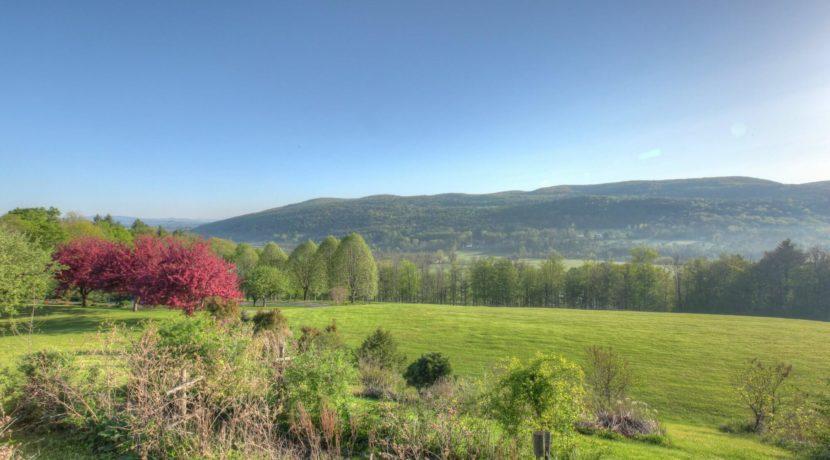 berkshire-morningstar-view