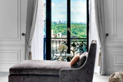 st-regis-residence-club-new-york-views