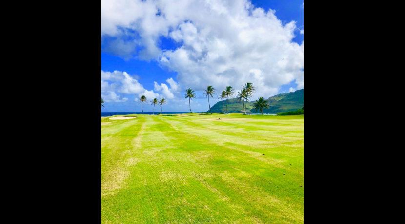 kauai-golf-fairway