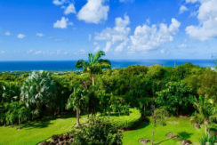lifestyle-asset-group-west-indies-view