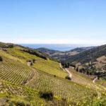 Cruzy, France – 3 Bedroom Wine Country Villa, $62,500