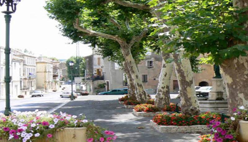 village-square-flowers