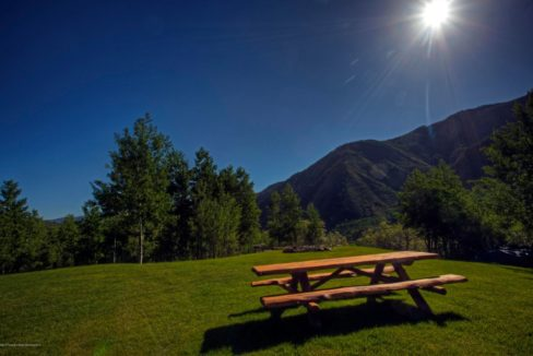 aspen-picnic